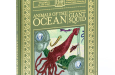 Animals_of_the_Ocean