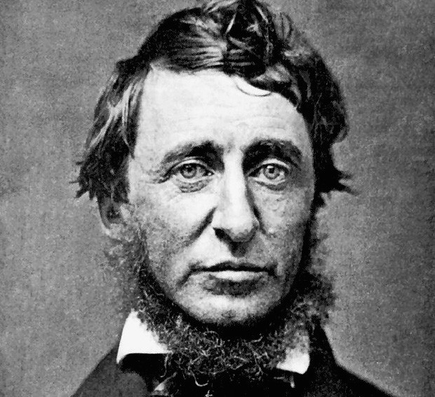 henry david thoreau and the novel walden Find great deals on ebay for henry david thoreau walden hardcover shop with confidence skip to main content ebay shop by category shop by category enter your search keyword advanced daily deals gift cards help & contact.
